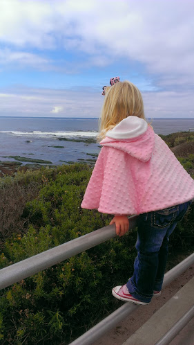 Family Adventures: La Jolla Tide Pools and Seal Watching