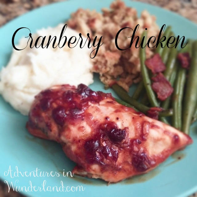 Crock Pot Cranberry Chicken Recipe