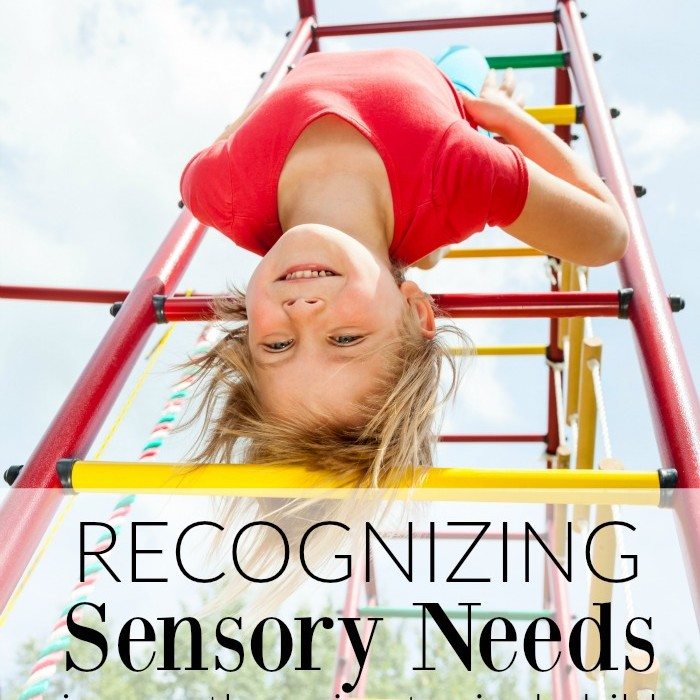Recognizing Sensory Needs in an Otherwise Typical Child