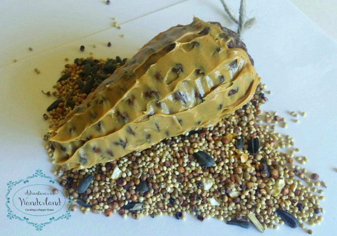 Craft Pine Cone Bird Feeder