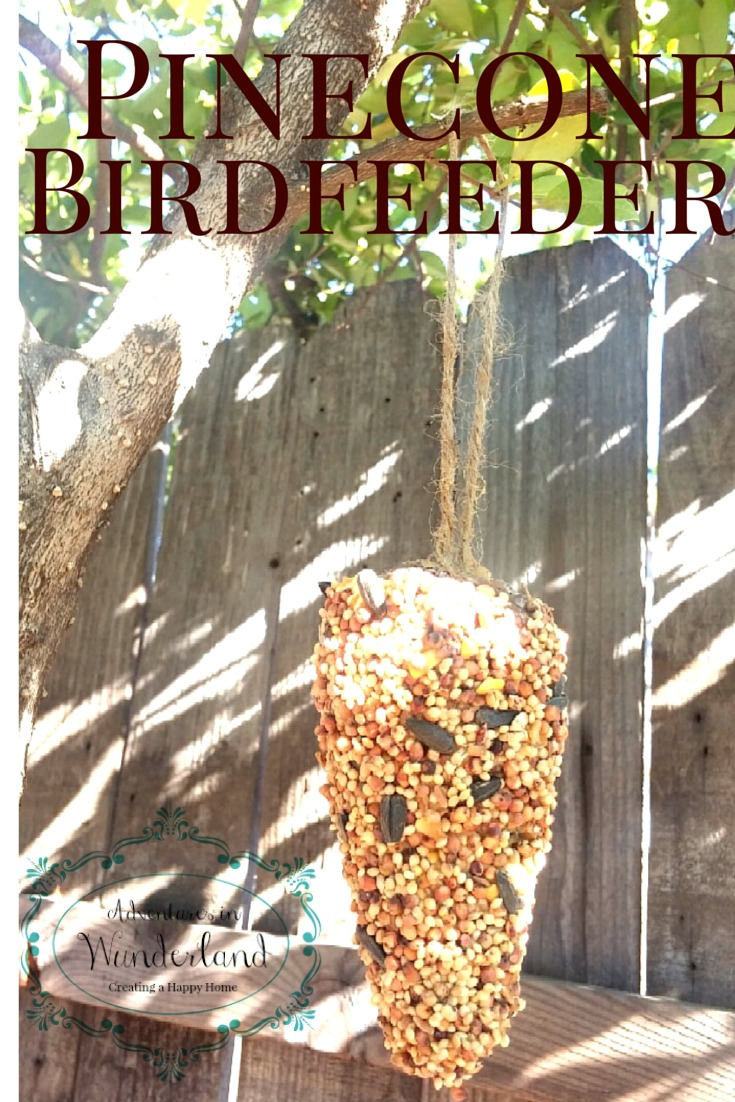 Pine Cone Bird Feeder-Simple Craft for Kids