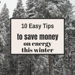save money on enegy