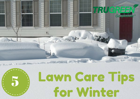 trugreen lawn care tips