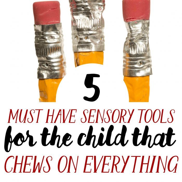 5 Awesome Sensory Tools for the Child that Chews on Everything