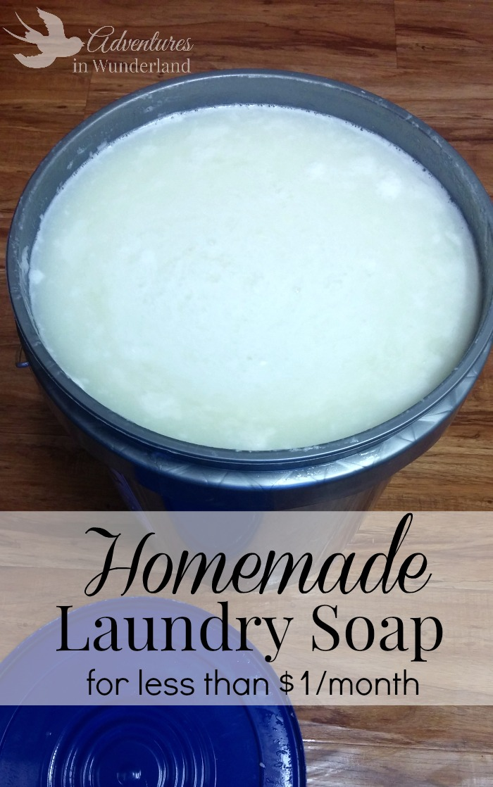 Homemade Laundry Soap (for less than $1/month)