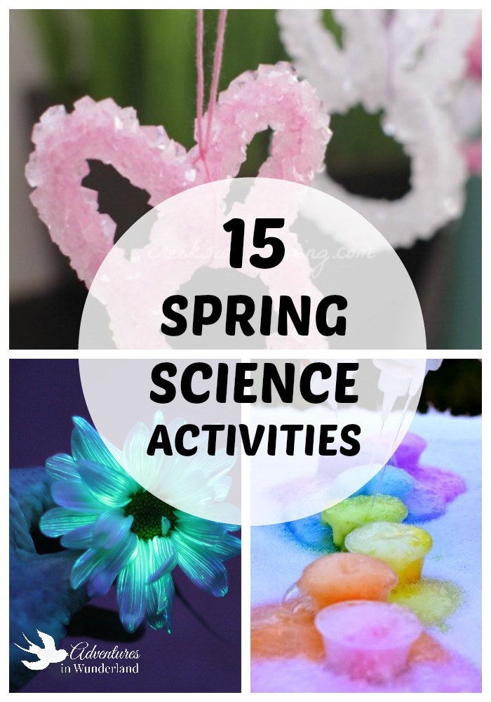 Spring Science Activities for Kids