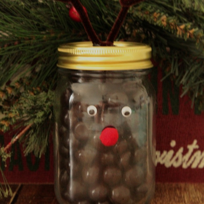 Chocolate Reindeer Gift Idea with Brookside Chocolate