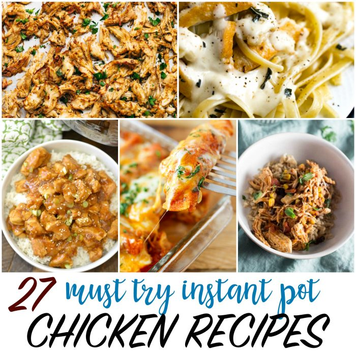 27 Must Try Instant Pot Chicken Recipes