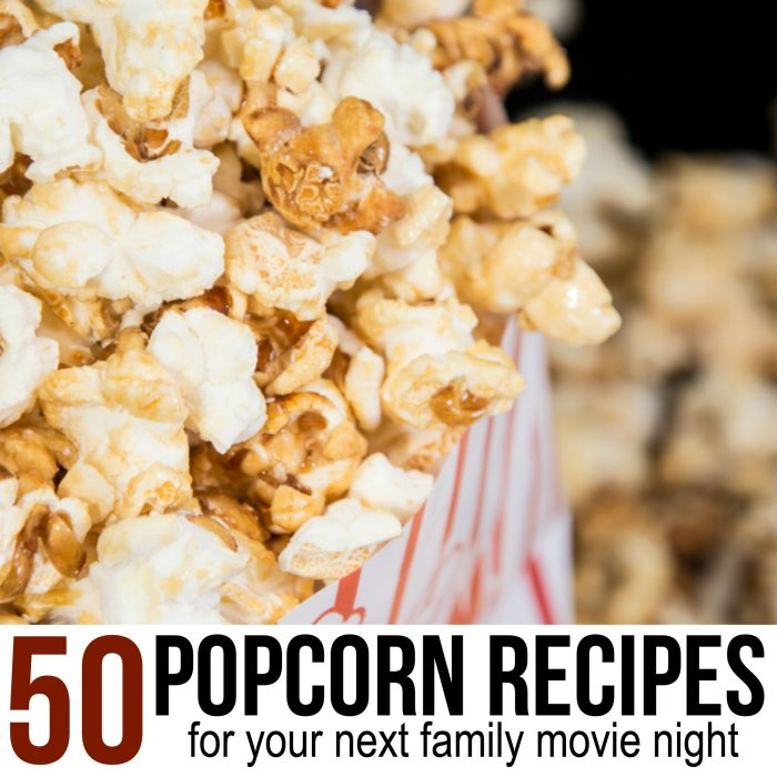 50 Must Try Popcorn Recipes and Seasonings for you next family movie night