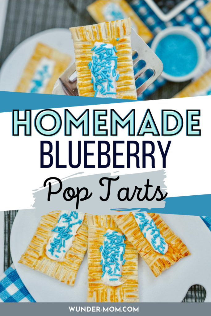 BLUEBERRY HOMEMADE POP TART BREAKFAST PASTRY